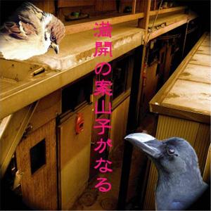 2008_3_honka_yotugyo